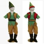 Boys Elf / Robin Hood Reversible Fancy Dress Costume